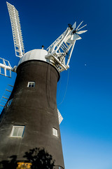 Holgate Windmill, May 2020 - 21