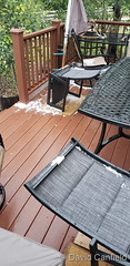 June 6, 2020 - Some small hail in Broomfield. (David Canfield)