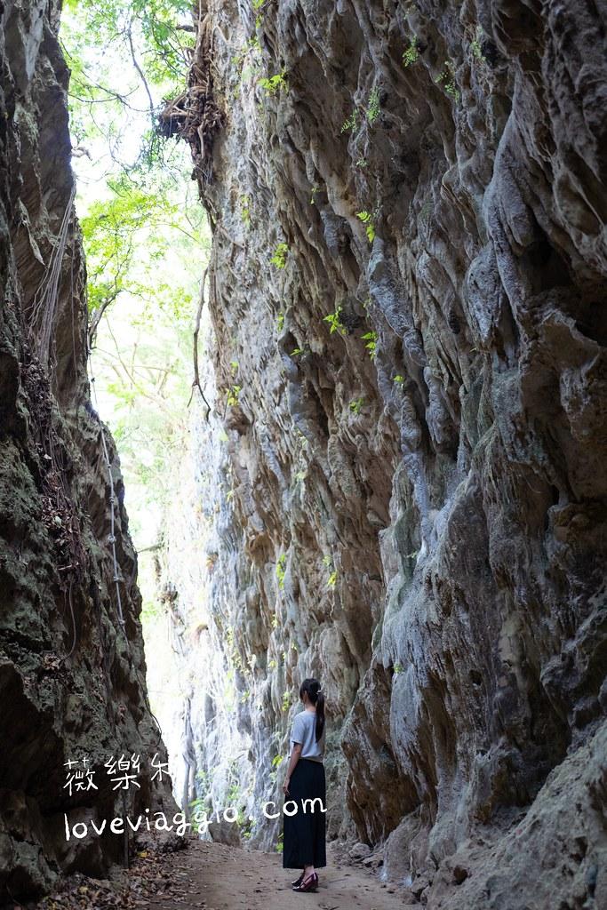 台灣中南部 12條森林步道 美景X秘境 X慢活森呼吸 @薇樂莉 Love Viaggio | 旅行.生活.攝影