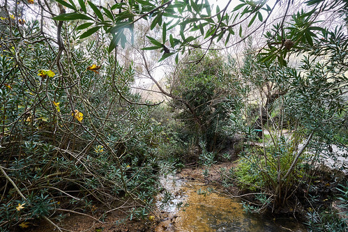 Israel Winter 2019 auf 2020, Metula, Wasserfälle