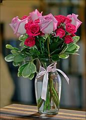 Roses A Vase & A Pink Ribbon
