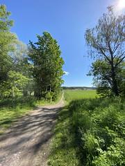 Long & Winding Road Wide