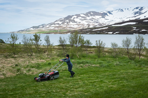 "Björn Helgi cutts the grass at the country cottage • <a style=""font-size:0.8em;"" href=""http://www.flickr.com/photos/22350928@N02/50004742627/"" target=""_blank"">View on Flickr</a>"