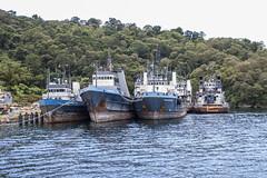 0551 Tidewater Boats