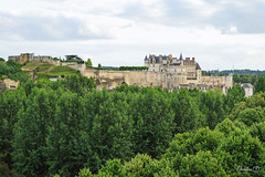 """amboise-DSC7850 • <a style=""""font-size:0.8em;"""" href=""""http://www.flickr.com/photos/161151931@N05/50009306483/"""" target=""""_blank"""">View on Flickr</a>"""