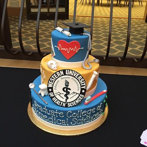 Cakes Chubby Cheek Cakes-70