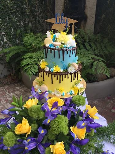 Cakes Chubby Cheek Cakes-48