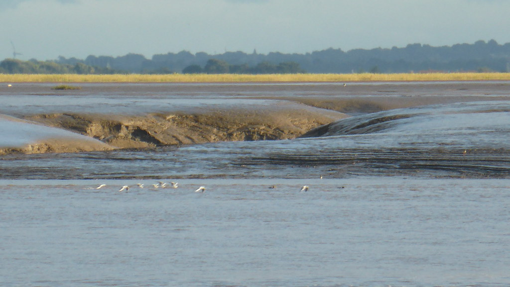 Mud Banks and Channels at St Annes, Lancashire