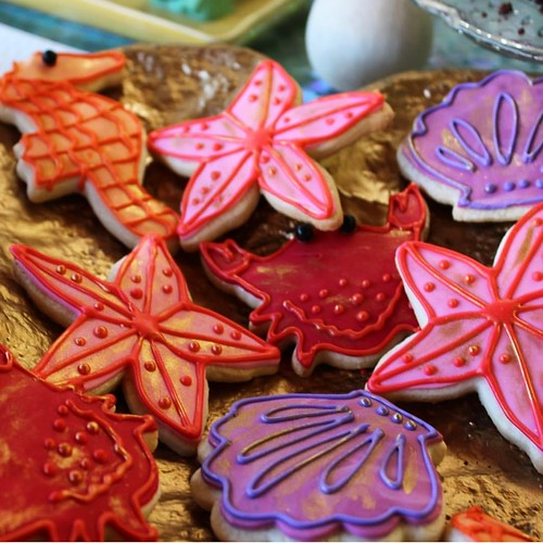 Cookies Chubby Cheek Cakes-12