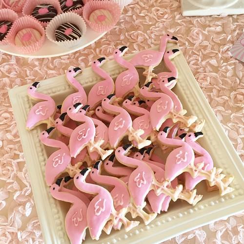Cookies Chubby Cheek Cakes-1