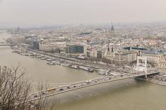 View of Elisabeth Bridge and Budapest from Gellért Hill