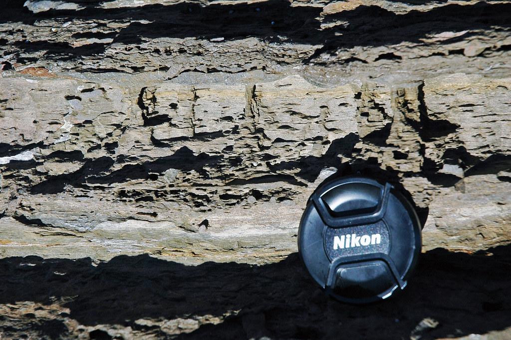 Sellick Hill Formation (Lower Cambrian; Myponga Beach West, Fleurieu Peninsula, South Australia) 25