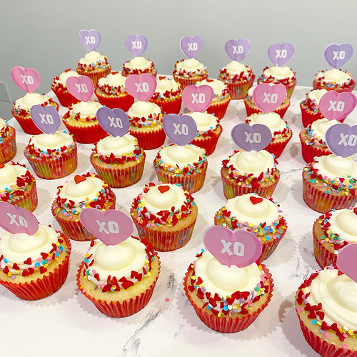 Cupcakes Chubby Cheek Cakes-8