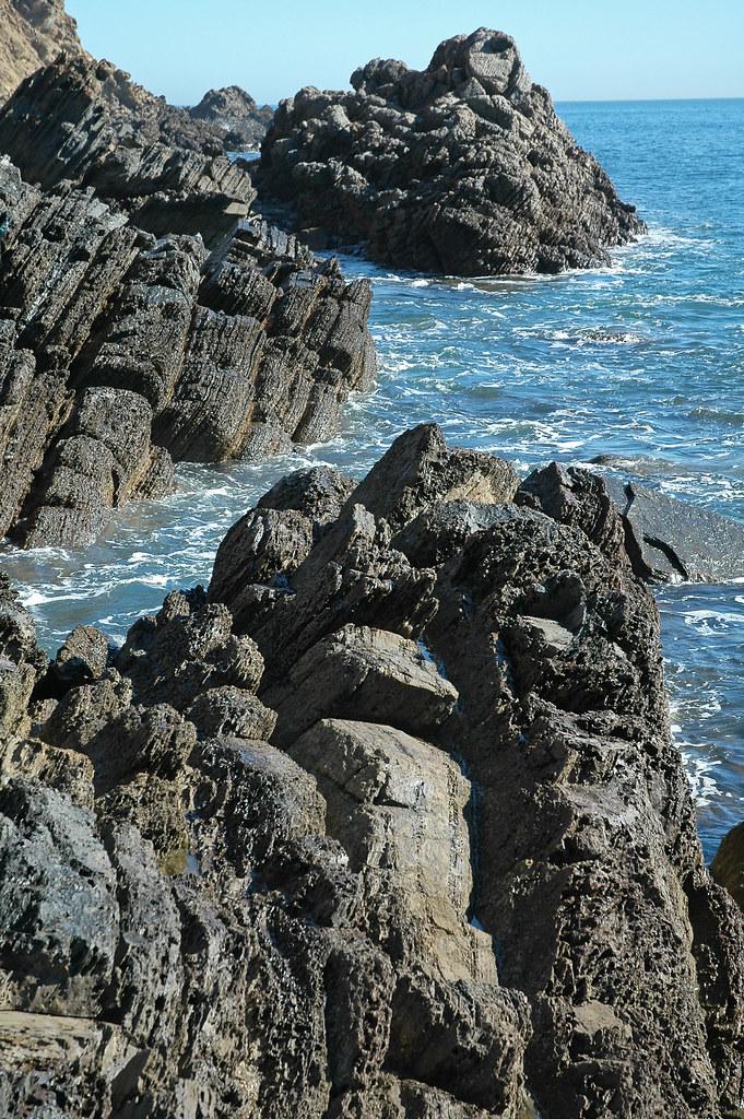 Sellick Hill Formation (Lower Cambrian; Myponga Beach West, Fleurieu Peninsula, South Australia) 26