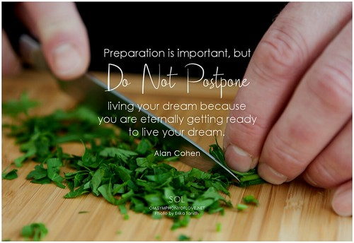 Alan Cohen Preparation is important, but do not postpone living your dream because you are eternally getting ready to live your dream