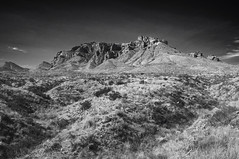 Chisos Mountains B&W