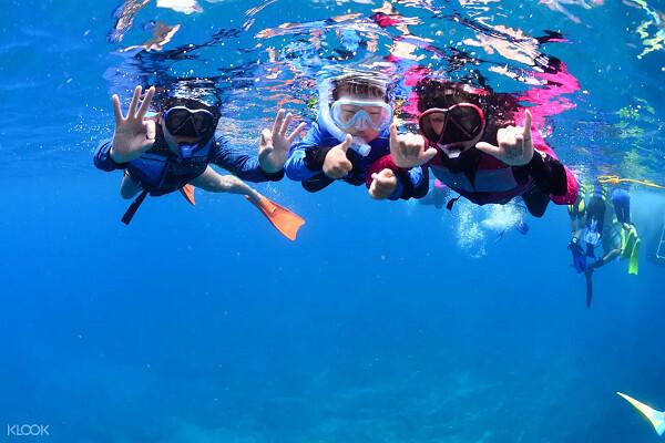 (圖8)參與小琉球有趣的浮潛體驗,探索繽紛的水下世界
