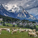 View of sheep grazing on a hillside in the town of Cortina d'Ampezzo in the Pomagagnon group of the Dolomites, Italy