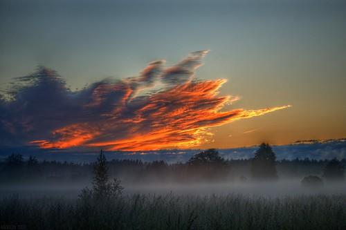 181_sunset_smarde_15.06.2020_02 ©  Егор Журавлёв