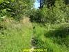 "2020-06-19 Pioniers pad vervolg etappe 03  Kraggenburg - Vollenhove  (14) • <a style=""font-size:0.8em;"" href=""http://www.flickr.com/photos/118469228@N03/50028276153/"" target=""_blank"">View on Flickr</a>"
