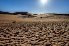 Sossusvlei, Désert du Namib, Namibie
