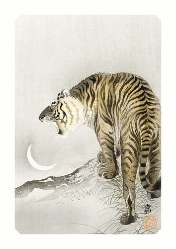 16-Affiche // A3 // Tiger