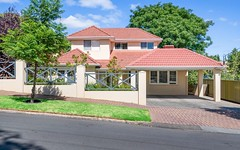 87 Anglesey Avenue, St Georges SA