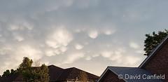June 19, 2020 - Mammatus clouds after a storm. (David Canfield)