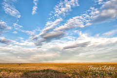 June 21, 2020 - A beautiful morning in the plains. (Tony's Takes)