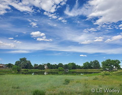June 21, 2020 - A beautiful day in Thornton. (LE Worley)