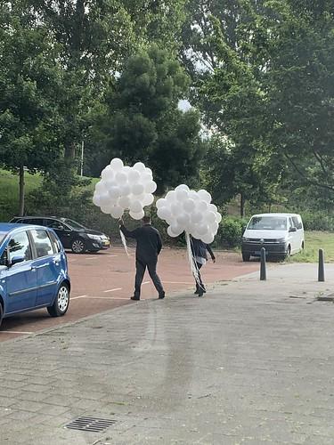 Heliumballonnen Wit Uitvaart Hoogvliet  Rotterdam