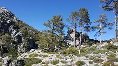 Parque Nacional de Talassemtane, cercanías de Adelal, Chaouen, Marruecos.