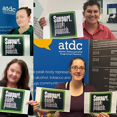 ATDC team SDP 2020