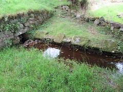 L'étang des Landes (23)