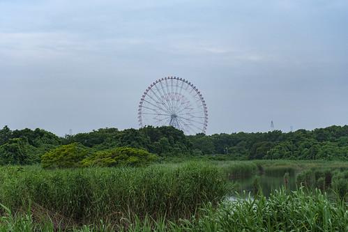 Diamond and Flower Ferris Wheel in Kasai Rinkai Koen