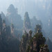 The Great Gallery - Zhangjiajie - China
