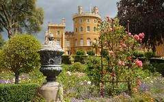 Photo of The Rose Garden