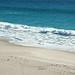 Sandy marine shoreline (Carrickalinga Head, Gulf St. Vincent, South Australia) 5
