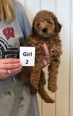 Carly Girl 2 6-28