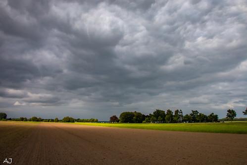 De polder op zijn mooist