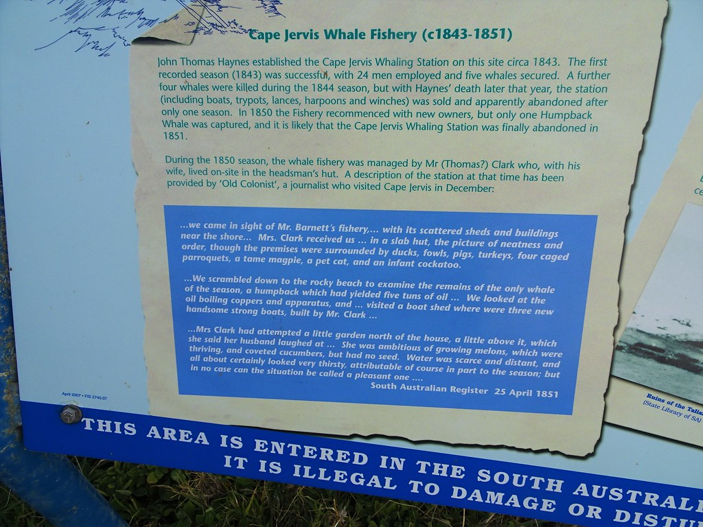 Fishery Beach near Cape Jervis on the Fleurieu Peninsula. Information board on the history of whaling at this site 1843 to 1851.