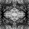 fractal03