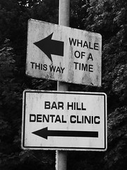 Photo of This Way Whale Of A Time Dental Clinic Signs Bar Hill June 2020