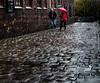Cobbles in the rain