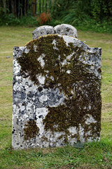 Photo of Church of St Peter and St Paul Upper Hardres Kent England - moss covered gravestone