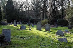 Photo of Church of St Mary Theydon Bois Essex England - churchyard at west