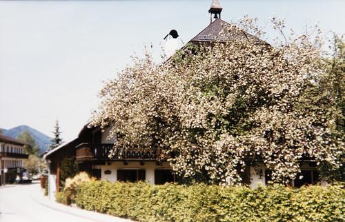 1986_Austria_085
