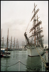 Photo of tall-ships