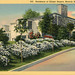 Residence of Ginger Rogers Beverly Hills California Vintage Postcard