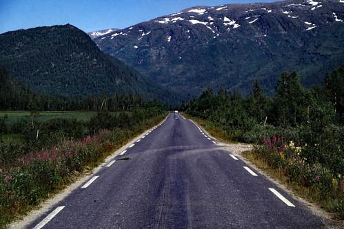"Norwegen 1998 (612) Røvassdalen • <a style=""font-size:0.8em;"" href=""http://www.flickr.com/photos/69570948@N04/50067531996/"" target=""_blank"">View on Flickr</a>"